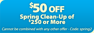 $50 OFF Atlanta Spring Clean-up in yards